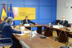 El ministro Luis Planas durante su intervención por videoconferencia