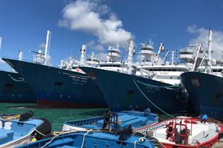 Buques españoles que faenan en el Océano Índico en un puerto