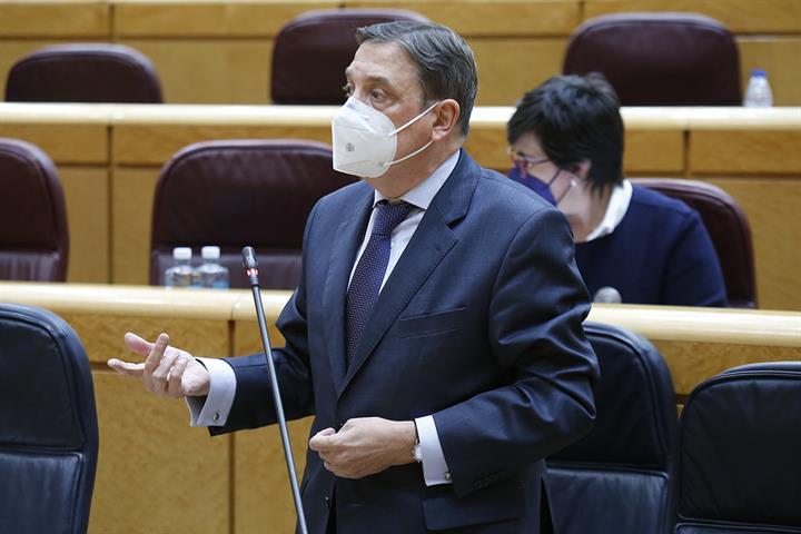 Luis Planas durante su intervención en el Senado