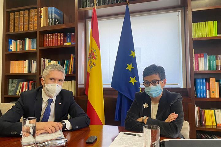 Fernando Grande Marlaska y Arancha González Laya durante la videoconferencia