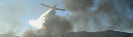 Avión y efectivos terrestres trabajando en la extinción de un incendio forestal