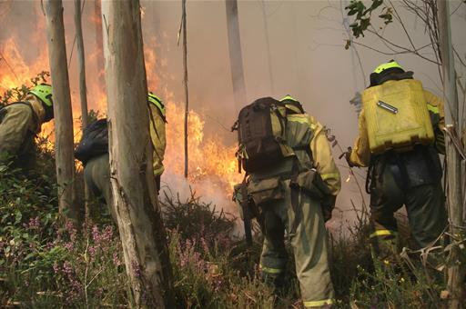 Brigada de Refuerzo de Incendios Forestales (BRIF) trabajando para sofocar un fuego